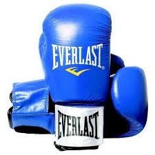 Manusi box piele Fighter, 16oz, albastru, Everlast
