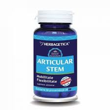 Articular Stem, 60 capsule, Herbagetica