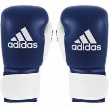 Manusi box profesionale cu scai Glory, albastru-alb,10 OZ