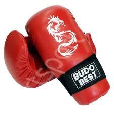 Manusi Kickbox Wako