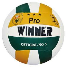 Minge volei antrenament Pro, Winner